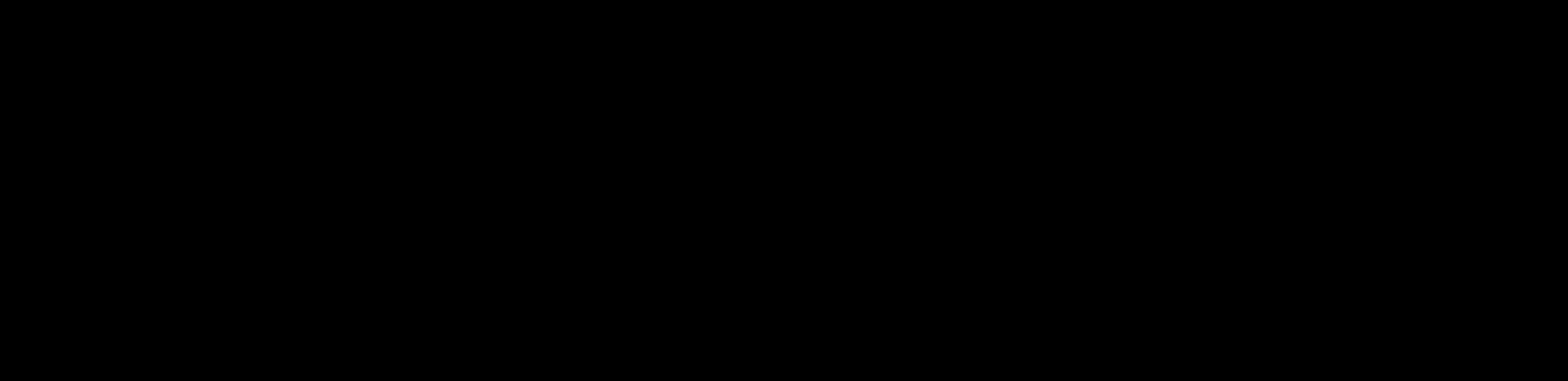 logo horizontal black large